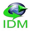 IDM(Internet Download Manager) v6.31.9 綠色中文破解版